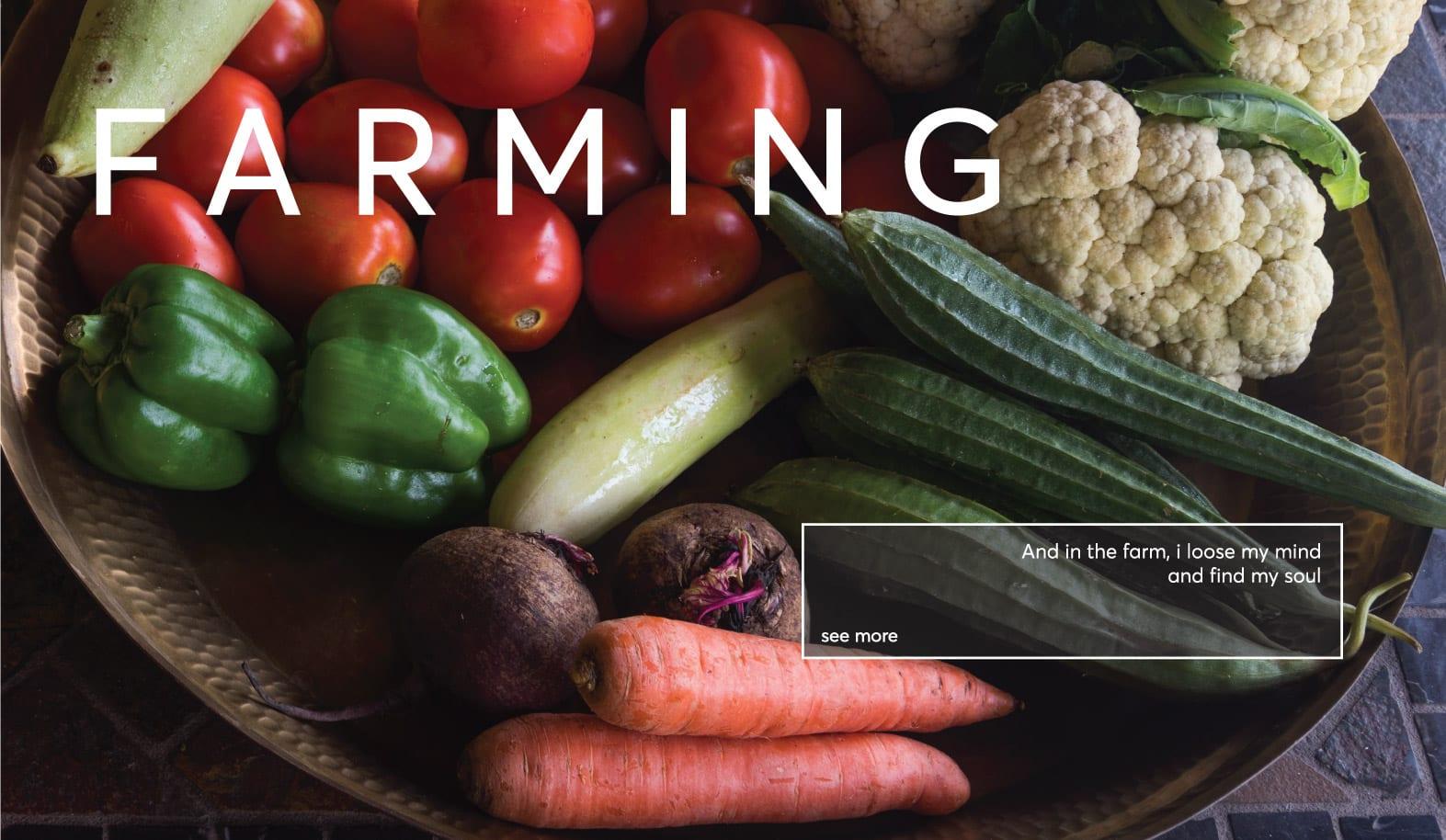 FARMING-SABZI-invi